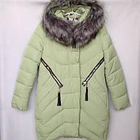 Куртка-пальто подростковая зимняя NIKA #6017 для девочек. 134-158 см (9-13 лет). Нежно-зеленая. Оптом., фото 1