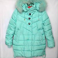 Куртка подростковая зимняя NIKA #6012 для девочек. 134-158 см (9-13 лет). Голубая. Оптом., фото 1