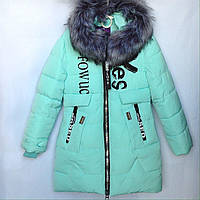 Куртка подростковая зимняя YES #6021 для девочек. 122-146 см (7-11 лет). Голубая. Оптом., фото 1