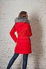 Женское зимнее пальто оптом 2017-2018 - (модель кт-148), фото 8