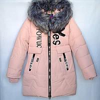 Куртка подростковая зимняя YES #6021 для девочек. 122-146 см (7-11 лет). Пудра. Оптом., фото 1