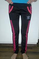 Спортивные штаны женские эластик
