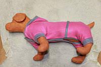 Одежда для собачки Костюмчик розовый с серым размеры есть все