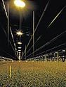 Лампа Sylv  SHP-TS GroLux 400W, фото 3