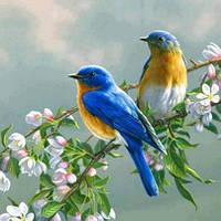 """Картины по номерам """"Птички на яблоне"""" 40х50см, С Коробкой"""