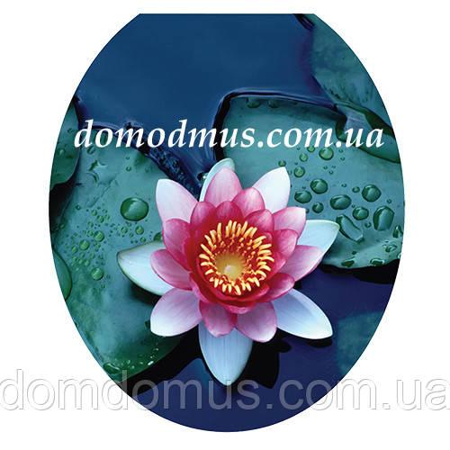 Сиденье мягкое с крышкой для унитаза  Aqua Fairy, UE1609