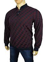 Мужской свитер с воротником Caporicco 7808 в большом размере