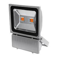 LED фитопрожектор 100 w полный спектр,  full spectrum