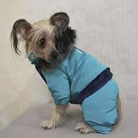 Костюм  Pet Fashion Макс XS2 (28) для собак