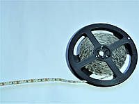 Светодиодная лента Motoko теплый белый SMD 3528 120 диодов на метр IP20 негерметичная (без силикона)