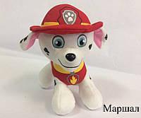 Мягкая игрушка Paw Patrol Щенячий Патруль 25 см. 1001956, Мягкая игрушка Paw Patrol Щенячий Патруль, щенячий патруль игрушки, игрушки интернет щенячий