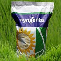 Семена подсолнечника СИ Експерто (CRUISER)