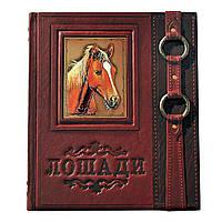 """Новая энциклопедия """"Лошади"""" - познавательная книга и оригинальный подарок"""