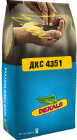 Семена кукурузы - ДКС 4351 (Мonsanto)