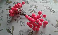 Калина глянцева (лакова) - яскраво розова