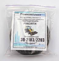 Набор гидроцилиндр рукоять ЭО 2103/2203 «Борекс» (арт.2195)