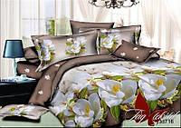 Двуспальный комплект постельного белья ранфорс R716 с комп. ТM TAG