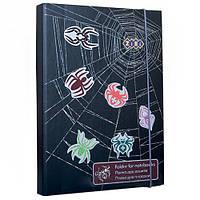 Папка для тетрадей, картонная SPIDER