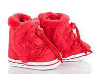 Детская зимняя обувь оптом. Детские зимние пинетки бренда Clibee - Caleton для девочек (рр. с 17 по 20)