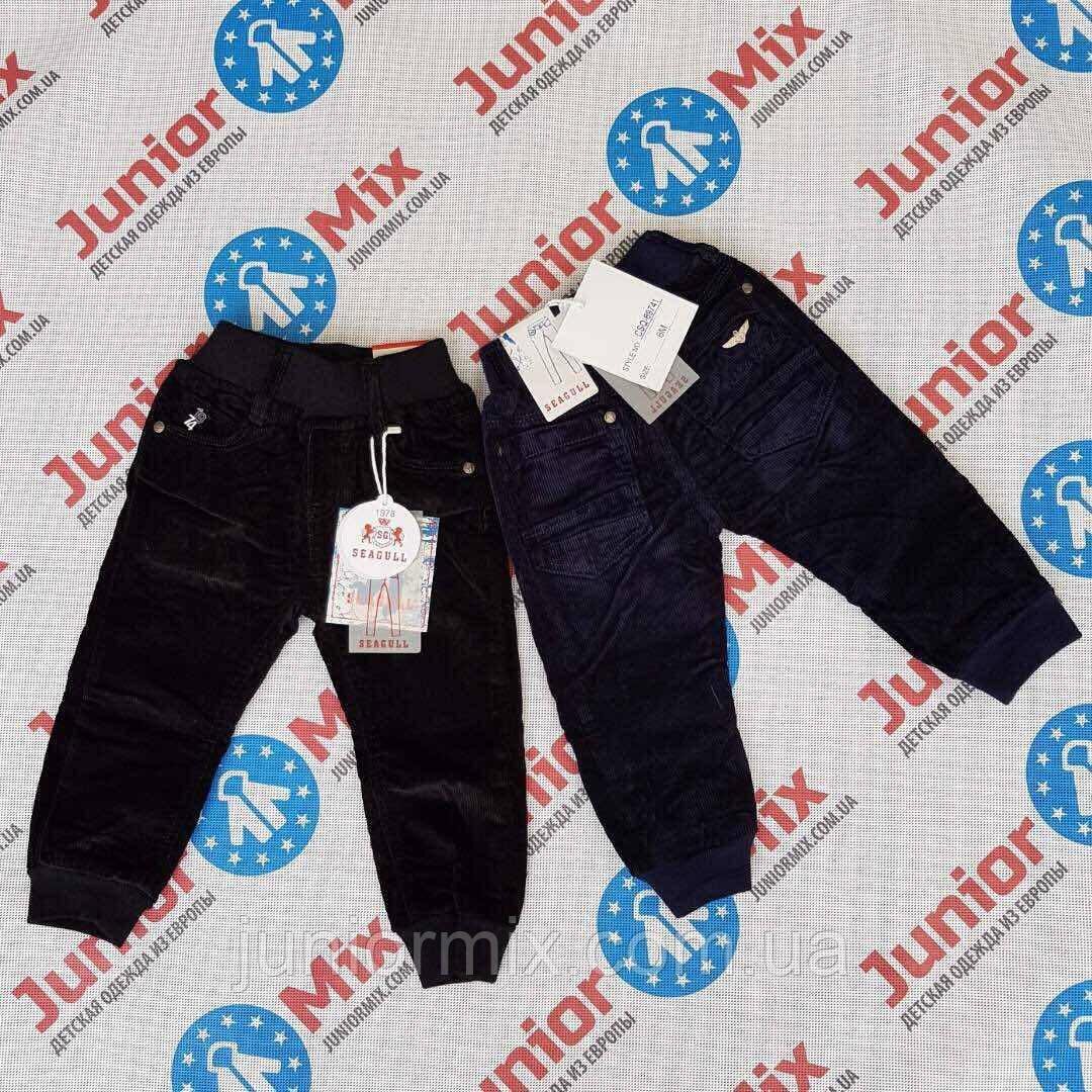 Детские вильветовые брюки на флисе для мальчиков оптом SEAGUUL