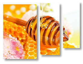 Модульная картина мед 3D