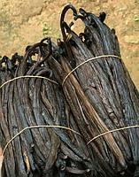 Ваниль в стручках (ванильная палочка) - Мадагаскар, фото 1