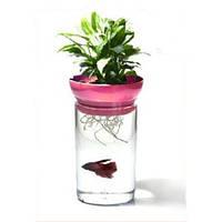 KW Zone Aquaponic Kit GA001 аквариум для петушка и растений розовый, 1.2л