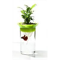KW Zone Aquaponic Kit GA003 аквариум для петушка и растений зеленый, 1.2л