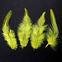 Перья петуха (Перо) Желтые 5-12 см 150 шт/уп 10 грамм