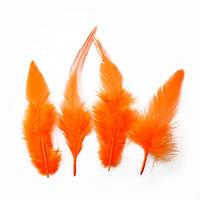 Перья петуха (Перо) Оранжевые 5-12 см 150 шт/уп 10 грамм
