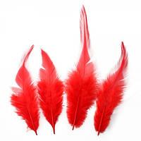 Перья петуха (Перо) Красные 5-12 см 150 шт/уп 10 грамм