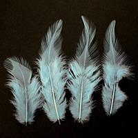 Перья петуха (Перо) Светло-голубые 5-12 см 150 шт/уп 10 грамм