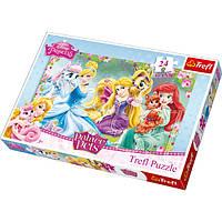 """Пазли """"24 Maxi"""" - Відпочинок у саду, Disney Princess, Trefl, 14223"""