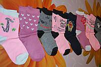 Шкарпетки дитячі.від 19см