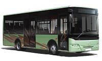Автобус городской / City Bus