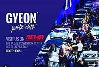 Gyeon и его победное шествие