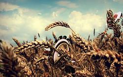 """Гаджети"" для сільського господарства"