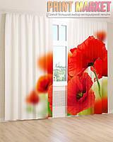 Фото шторы красные маки
