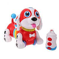 Музыкальная радиоуправляемая собака BB396