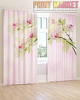Фото шторы бело-розовая орхидея