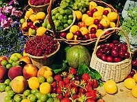 Саженцы фруктово-ягодных культур
