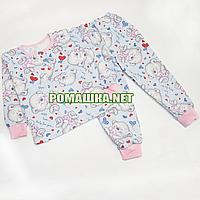 Детская байковая пижама для девочки с начесом р. 104-110 ткань ФУТЕР 100% хлопок ТМ Алекс 3487 Розовый Б 110