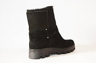 Замшевые женские ботинки Kento, фото 2