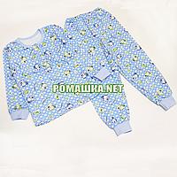 Детская байковая пижама для мальчика с начесом р. 104-110 ткань ФУТЕР 100% хлопок ТМ Алекс 3487 Голубой А 110