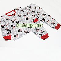 Детская байковая пижама с начесом р. 92-98 ткань ФУТЕР 100% хлопок ТМ Алекс 3487 Серый Б 98