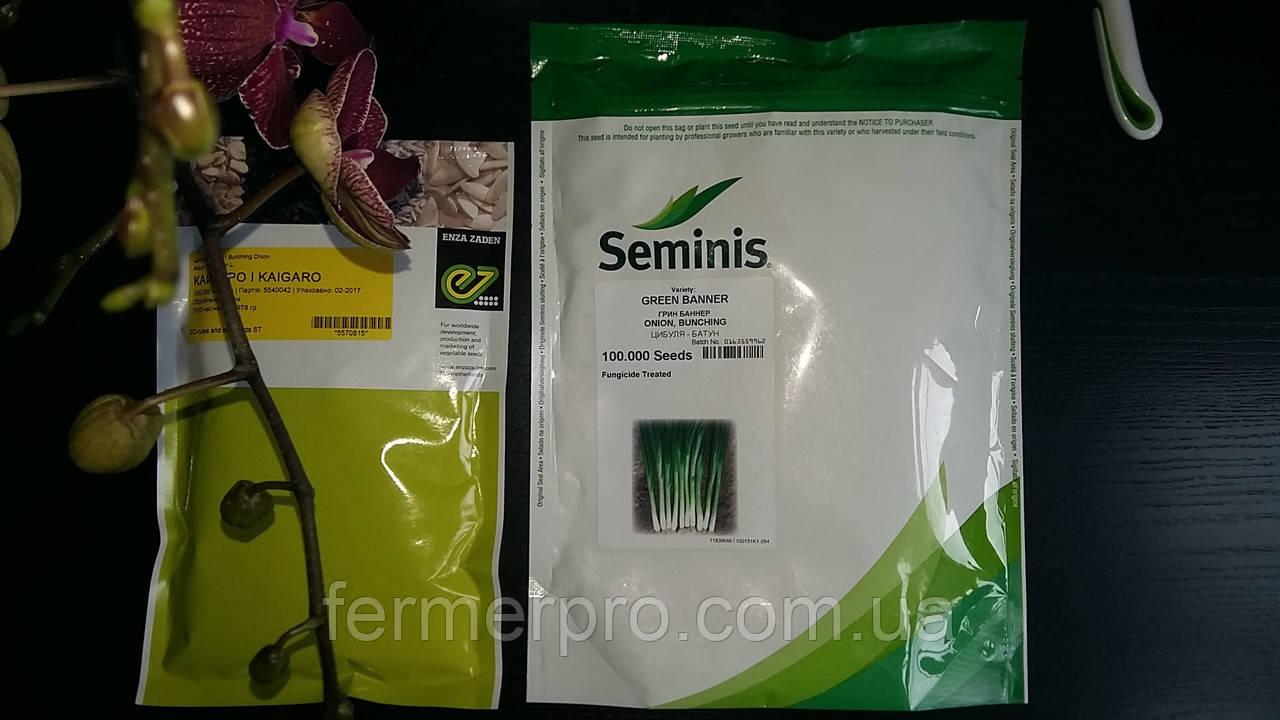Семена лука на перо Грин Баннер \ Green Banner  250.000 семян Seminis