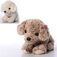Мягкая игрушка «Собачка» 00525Yiwu Plush