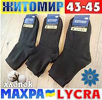Носки мужские с махрой внутри  Житомир Украина 43-45р  НМЗ-04259