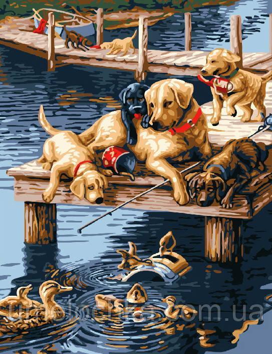 Картина раскраска по номерам без коробки Лабрадоры на пристани (BK-GX7092) 40 х 50 см