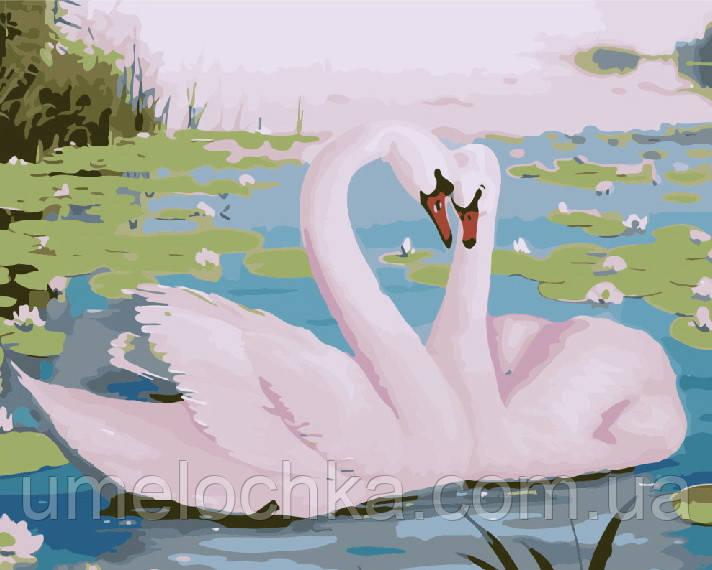 Картина по номерам Прекрасные лебеди (BRM7228) 40 х 50 см